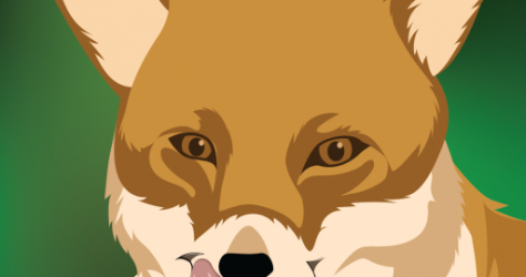 cropped-goodfoodfox.png
